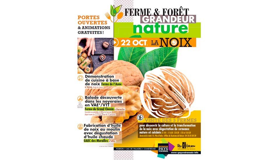 Ferme et Forêt Grandeur Nature : La noix