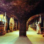 Visite des Caves de Chartreuse : classe cocktails Voiron